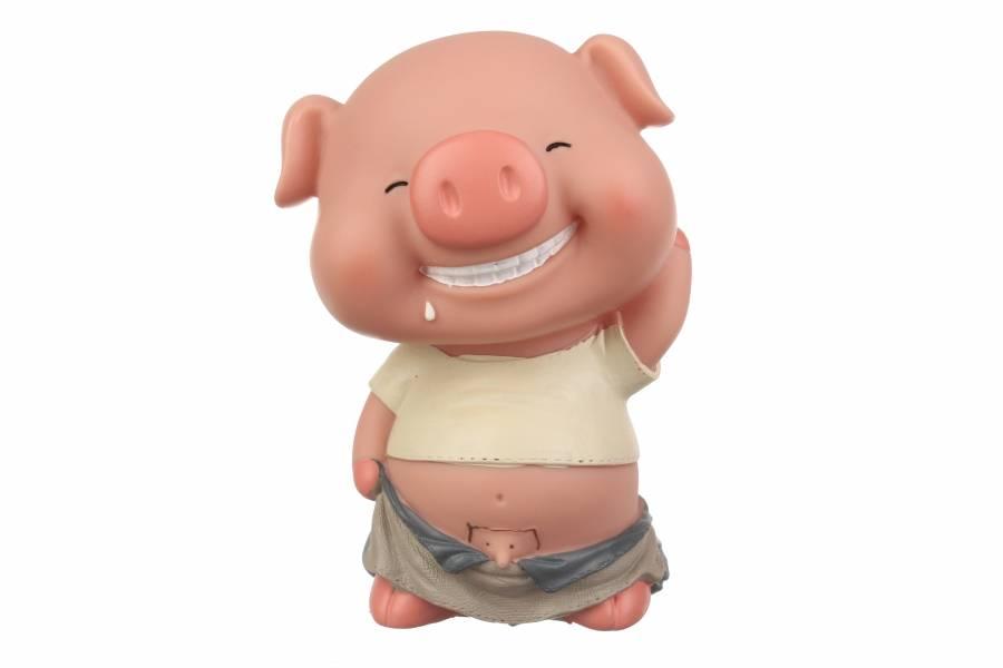 Копилка свинка мальчик 5-49554